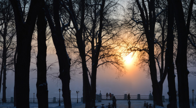 Прогулка по парку. Фотопроект Дарьи Курносенковой