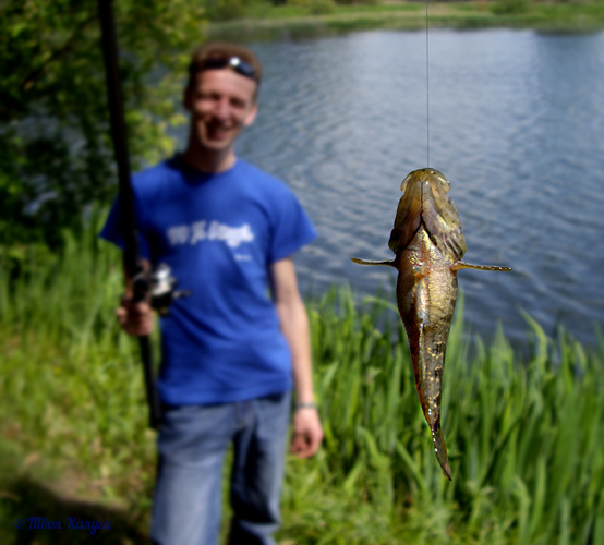 Калужская рыбка