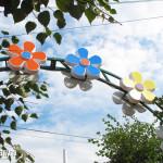 Цветы ко дню города