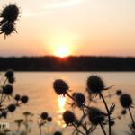 Закат на Калужском море