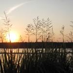 Закат на Яченке