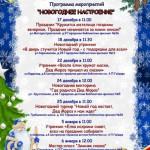 Новый год в библиотеках с 17 декабря по 6 января