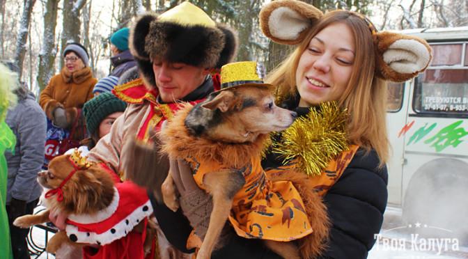 Новогодний маскарад-2016 в Калуге. Фотогалерея
