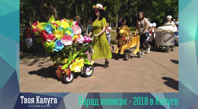 Парад колясок — 2018 в Калуге: фото и видео